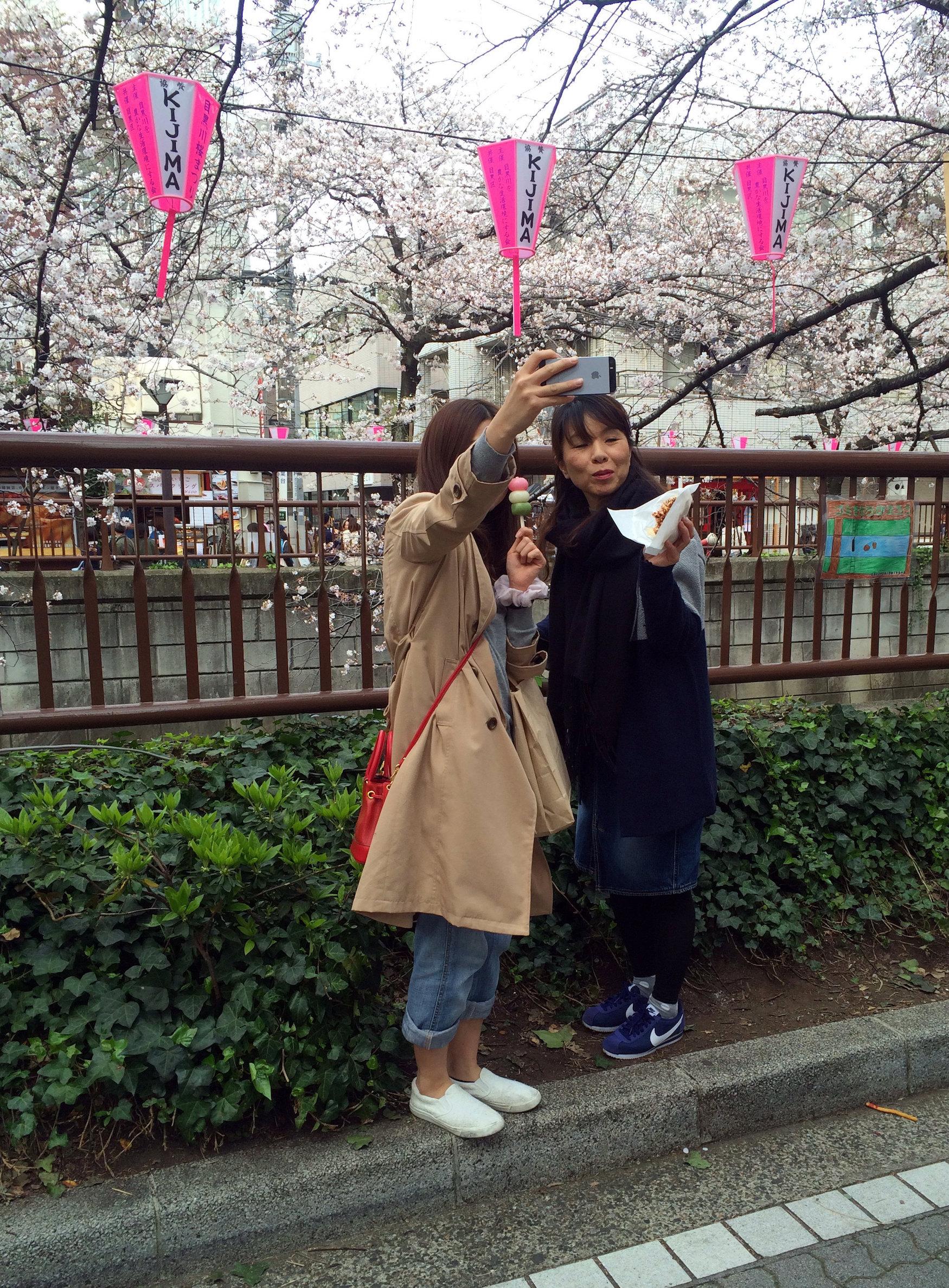Hanami-Selfies. Jeder braucht mindestens eines.